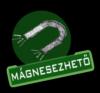 mágnesezhető